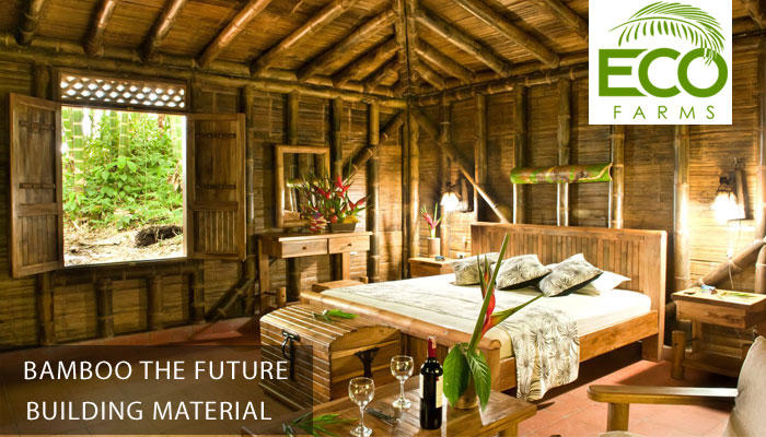 Bamboo building material disadvantages eco farms for Bamboo roofing materials